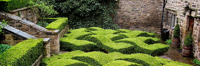 http://www.topiary.ru/design/standart/images/picture_1.jpg